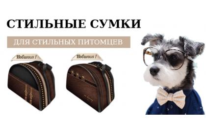 Банер СУМКИ